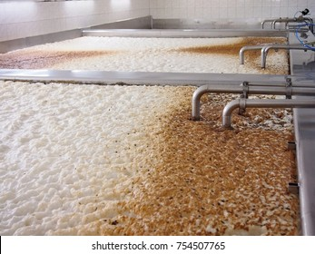 Fermenting of a beer in an open fermenters in a brewery.
