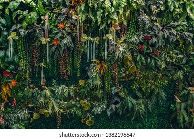 fern and plant decorate on wall