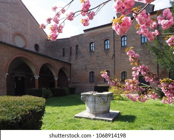 Ferrara, Italy - Avril 14, 2018. Flowering of the cherry tree in the external courtyard of Sant'Antonio in Polesine. This is aCatholicmonastic complexof nuns of theOrder of Saint Benedict.