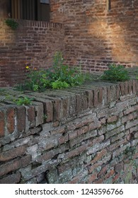 Ferrara, Italy. Este Castle, detail. The grass grows on the ancient brick walls.
