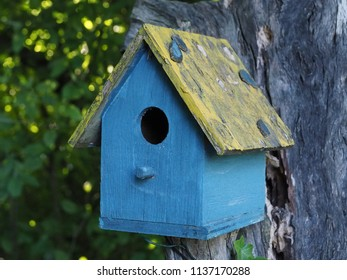 Ferrara, Italy - June 20, 2018. Colored wooden cottage for birds.