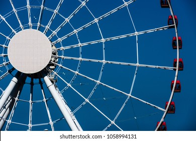 The ferris wheel in the park