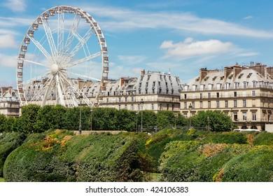 Ferris wheel (Roue de Paris) at Place de la Concorde in Paris, France. Roue de Paris spring in France. Ferris wheel in Paris. Sunny day in France, outdoor landscape. Travel to famous Europe landmarks