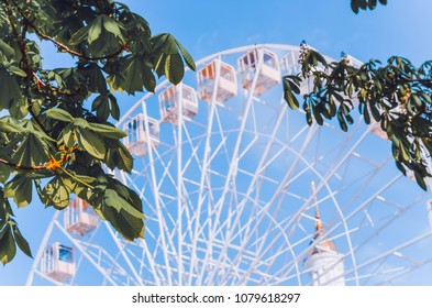 The Ferris wheel in the spring