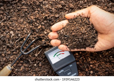 A fertile loam in the hands of a farmer man and a soil measurement in place. - Shutterstock ID 1939146223