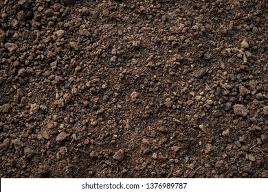 Fertile loam soil suitable for planting, soil texture background.