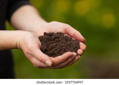 Fertile soil. Female hands hold garden ground. Sustainable agriculture.