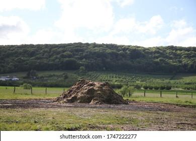 Fertilizing horse cow manure straw pile - Shutterstock ID 1747222277