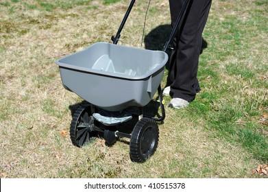 fertilizing the lawn by fertilizer spreader