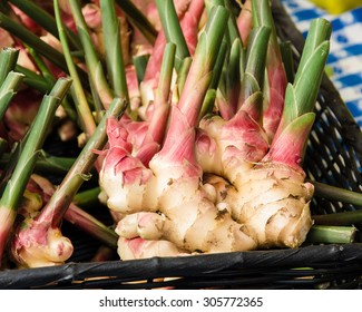 Fesh ginger root with stems at the farm market