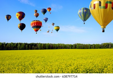 Festival of balloons over the rapeseed field.