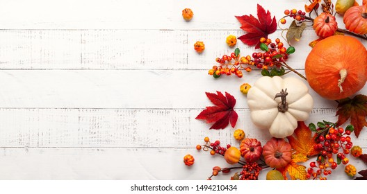 Festive autumn decor from pumpkins, berries and leaves on a white  wooden background. Concept of Thanksgiving day or Halloween. Flat lay autumn composition with copy space. - Shutterstock ID 1494210434