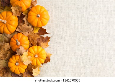 Festive autumn theme backgorund border graphic elements Horizontal
