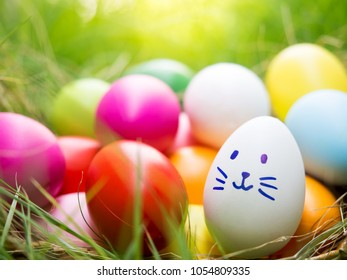 Festive decoration and Happy Easter Concept. The cute bunny feeling happy have big smile face painting  on white  Easter egg in between  massive colorful Easter egg stroll and and sunlight in summer.