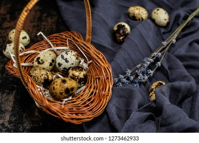 Festive Easter background with quail eggs in the basket and branches of dry lavender on the dark background.