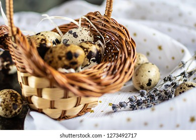 Festive Easter composition with colorful quail eggs in the basket and branches of aromatic dry lavender.