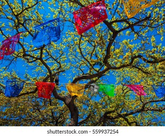 Festive flags hung in a tree for street festival in San Antonio Texas