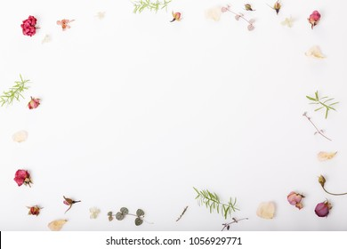 Festive flowers composition. Frame made of dried rose flowers, shells, ribbon on white background. Overhead top view, flat lay. Copy space. Birthday, Mother's, Valentines, Women's, Wedding Day concept