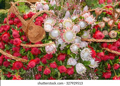 Festive flowers decoration at the Madeira Flower Festival. Madeira Islands, Portugal.