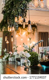 Festive wedding table with Garland of Edison bulbs hanging on laces, decorated by green flower branches. grainy effect
