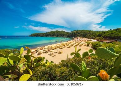 Fetovaia beach, Elba Island, Tuscany, Italy.