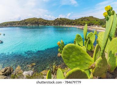 Fetovaia beach on Elba island, Tuscany, Italy.