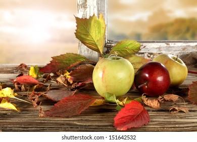 few apples and window