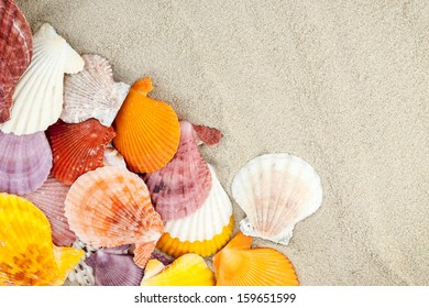 Few colorful scallops on a sandy background.