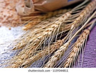 Few ears of wheat.