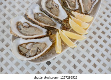A few fresh, appetizing oysters with a sliced ragrant ripe lemon lay on a large oval dish. Close-up.