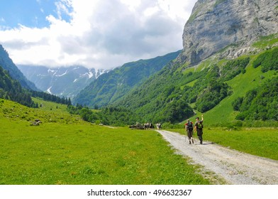 few hikers trekking in alps, Switzerland, with mountains in the background