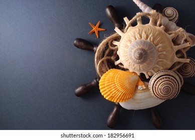 Few marine items over gray background.