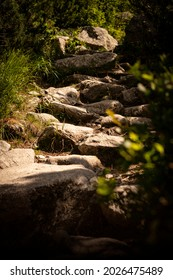 A few stones show the right direction.  - Shutterstock ID 2026475489