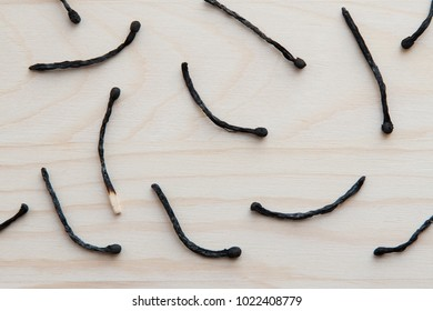 a few wooden burnt matches against a light brown tree