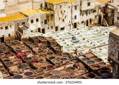 FEZ, MOROCCO - SEPTEMBER 9. 2009: Workers at the Chouwara tannery in Fez, Morocco.