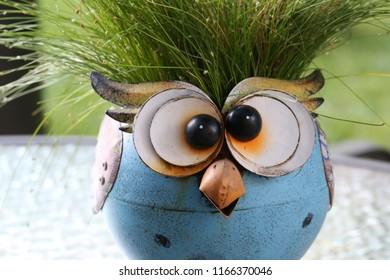 Fiber Optic Grass Images, Stock Photos & Vectors | Shutterstock