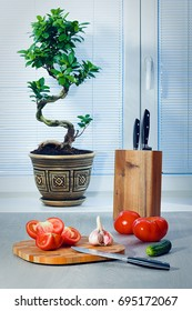 Ficus a bonsai near a window about blinds, tomatoes, garlic, a cucumber, knives and a chopping board