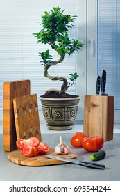 Ficus a bonsai near a window about blinds, tomatoes, garlic, a cucumber, knives and a chopping boards