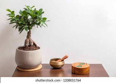 Ficus Ginseng - Bonsai tree, singing bowl and jin jang candlestick