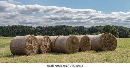 field after harvest with a bales of hay and sky