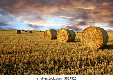 Field after harvest and dramatic sky during sunset