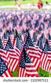 Field of American Flags
