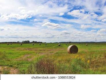 The field with bales of haystacks. Rural landscape with cloudy blue sky over the field full of rolled hay bales. Agriculture and farming background. Midwest USA, Wisconsin, Madison area.