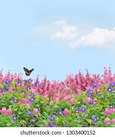 Field of beautiful pansies, violets, and coral bells under a sunny sky with a butterfly