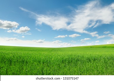 field and blue sky