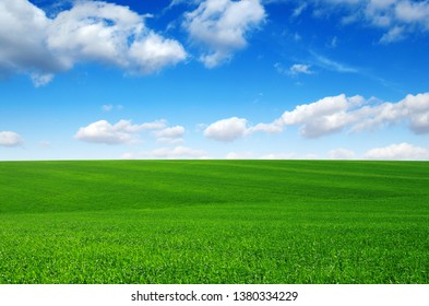 Field and blue sky with white clouds