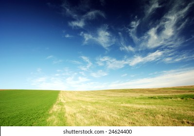 Field - blue sky and white clouds