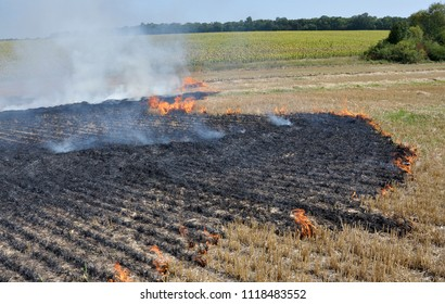 The field burns stubble and post-fallen remains after harvesting grain crops