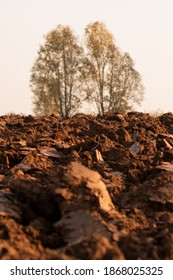 field with clods of earth at sunset