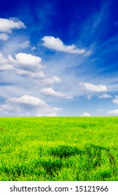 field covered by a grass and the beautiful blue sky